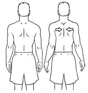 حرکات اصلاحی برای درمان پارگی،کشیدگی و التهاب تاندون های شانه